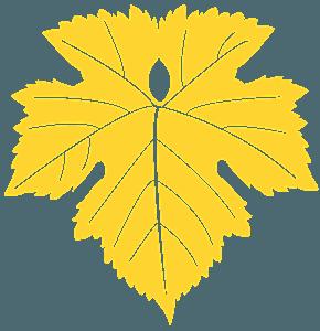 Grape Leaf silhouette