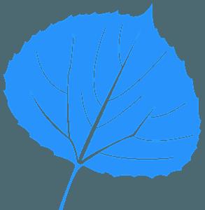 Liść osiki - sylwetka wektorowa