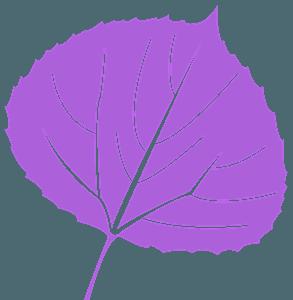 Blad van esp vector silhouet