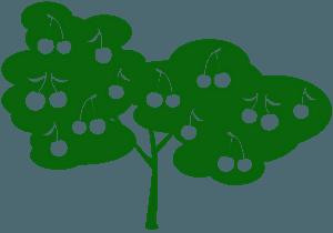 Wiśnia - sylwetka wektorowa