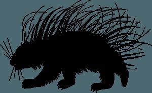 Porcupine - sylwetka wektorowa