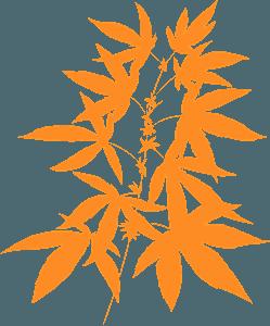 Marijuana - Векторный Силуэт