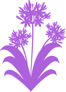 Spring flowers vector silhouet