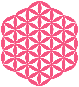Flower of Life Silhouette vector silhouet