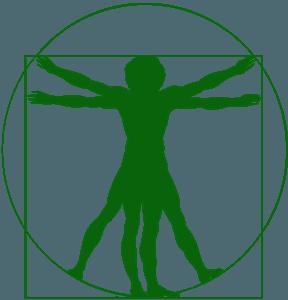 Homem Vitruviano silhueta vetor