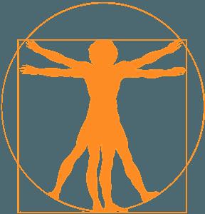 Den vitruvianske mand vektor silhuet