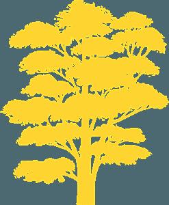 Tree siluetti