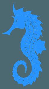 Seahorse - sylwetka wektorowa