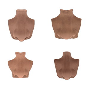 Set of Noses 3D Model