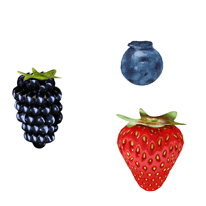 Set of berries 3D Model