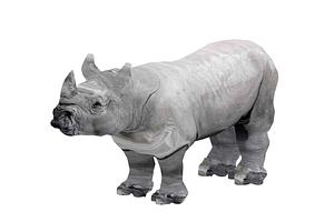 Sarvikuono 3D-malli