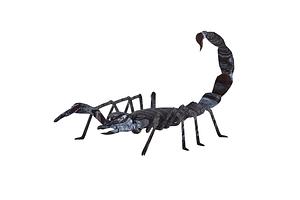Skorpioni 3D-malli