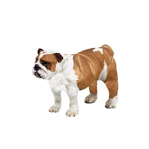 Bulldog 3D-malli