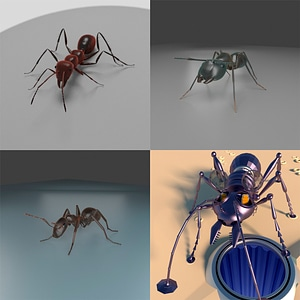 Ants Set 3D Model