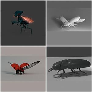 Bugs Set 3D Model