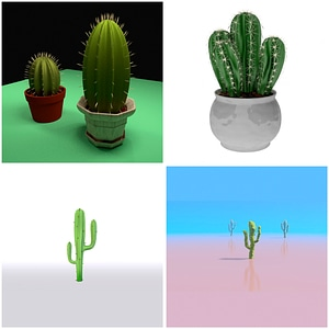 Cactuses Set 3D Model