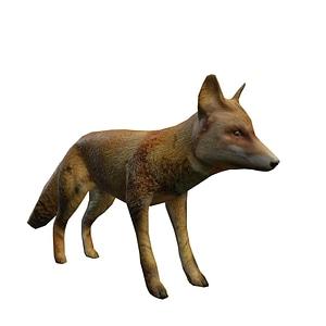 Fox 3D Model