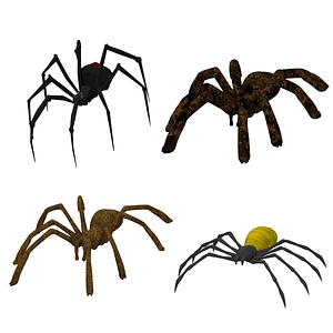 Set of Spiders 3D Model