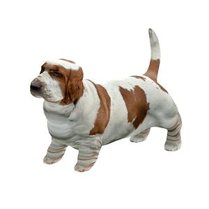 Basset hound 3D-malli
