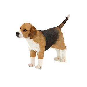 Beagle 3D-malli