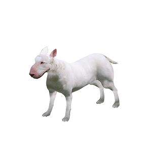 Bullterrieri 3D-malli