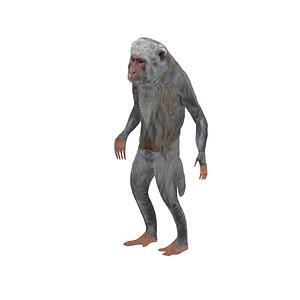 Modelo 3D de Macaque