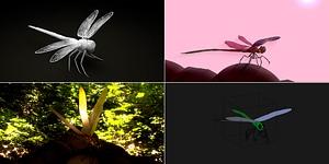 Dragonflies Set 3D Model