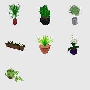 Set of Plants 3D Model