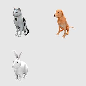 Set of Pets 3D Model