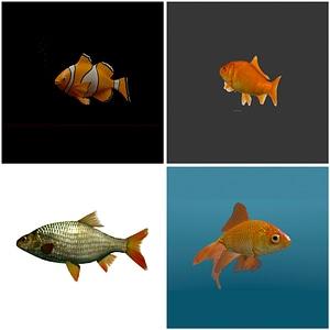 Fish Set 3D Model