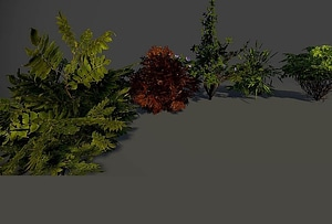 Set of Bushes 3D Model