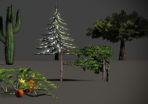 Trees and Other Plants 3D Model