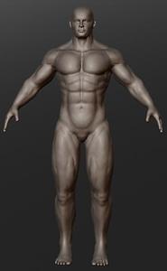 Bodybuilder 3D Model
