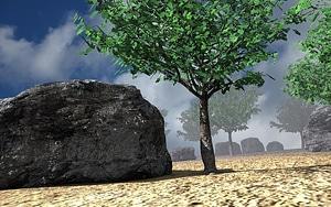 Rock terrain and boulder 3D Model