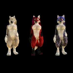 Loup anthropomorphique, renard, chat modèle 3D