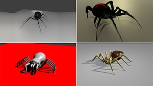 Spiders 3D Model