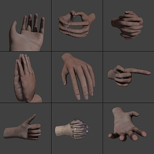 Hands rigged 3D Model
