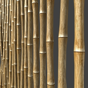 Bamboo Fence Texture 3D Model