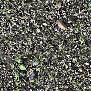 Rock Weeds Texture 3D Model