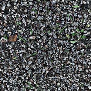 Rocks Weeds Texture 3D Model