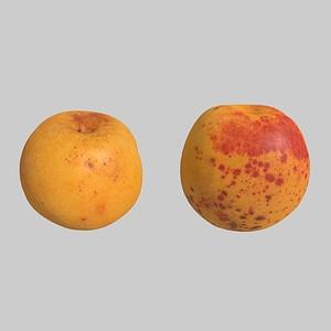 Apricots 3D Model
