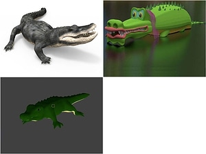 Alligator and Crocodile 3D Model