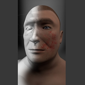 Advanced Head 3D Model