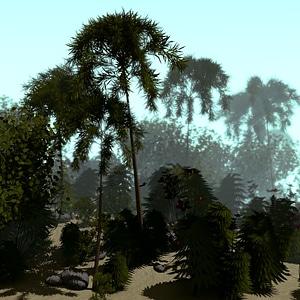 Tropic Terrain 3D Model