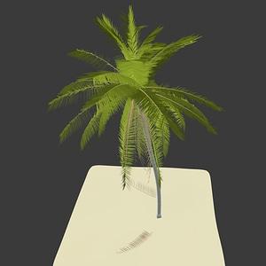 Palm Tree3Dモデル