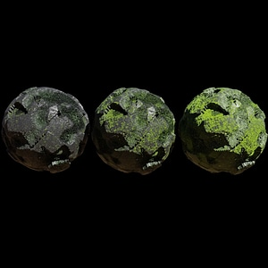 Rock with Moss 3D Model