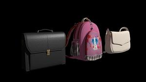 Set of Bags 3D Model