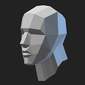 Basic Head Mesh 3D Model
