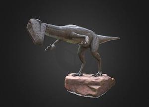 Coelophysis dinosaur model 3D Model
