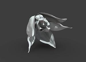 Embreea herrenhusana 3D Model